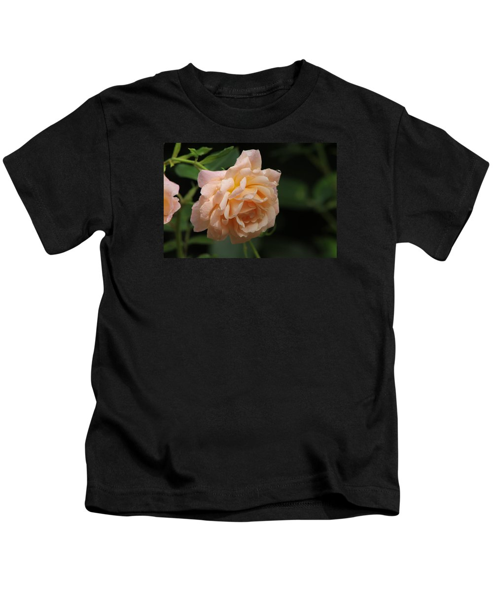 Rose Kids T-Shirt featuring the photograph Rose by Kyle Hillman