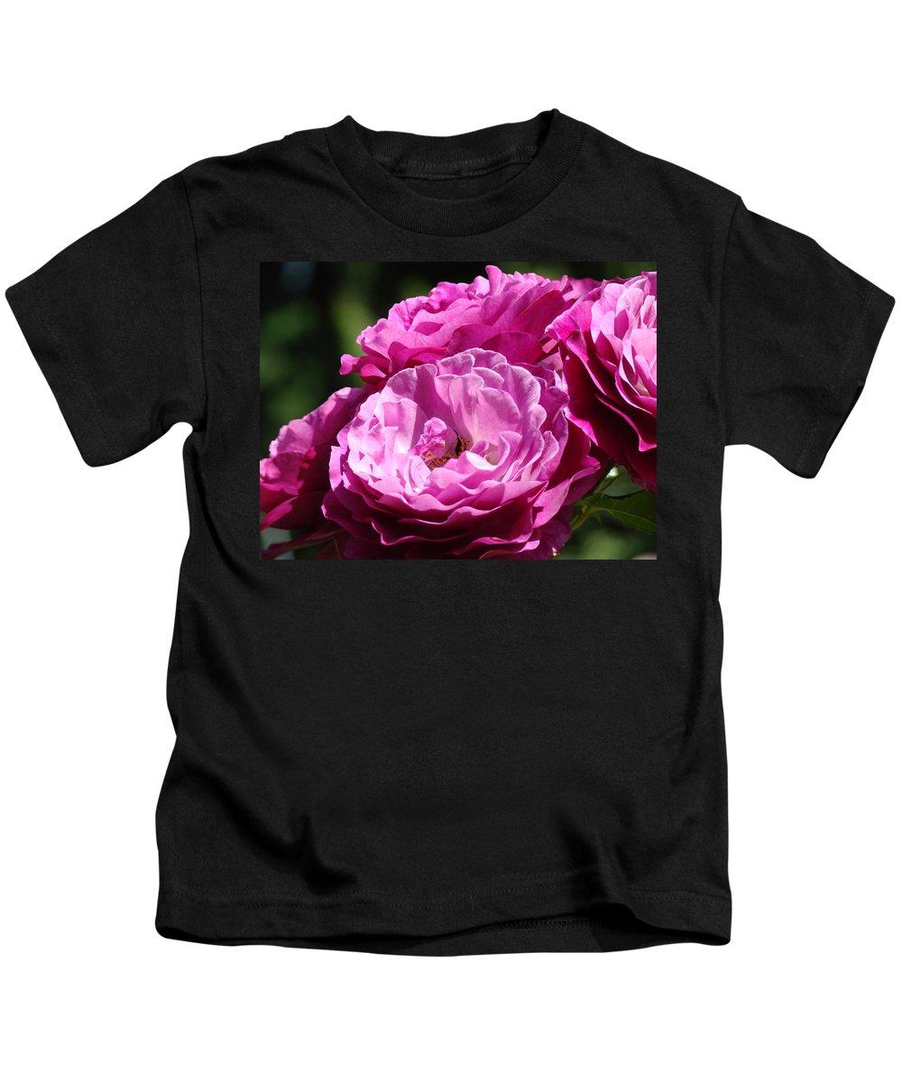 Rose Kids T-Shirt featuring the photograph Rose Pink Purple Roses Flowers 1 Rose Garden Sunlit Flowers Baslee Troutman by Baslee Troutman