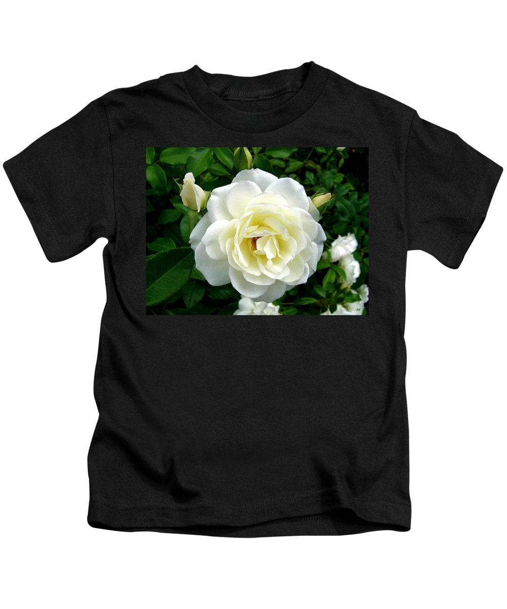 Rose Kids T-Shirt featuring the photograph Roses 2 by Will Borden