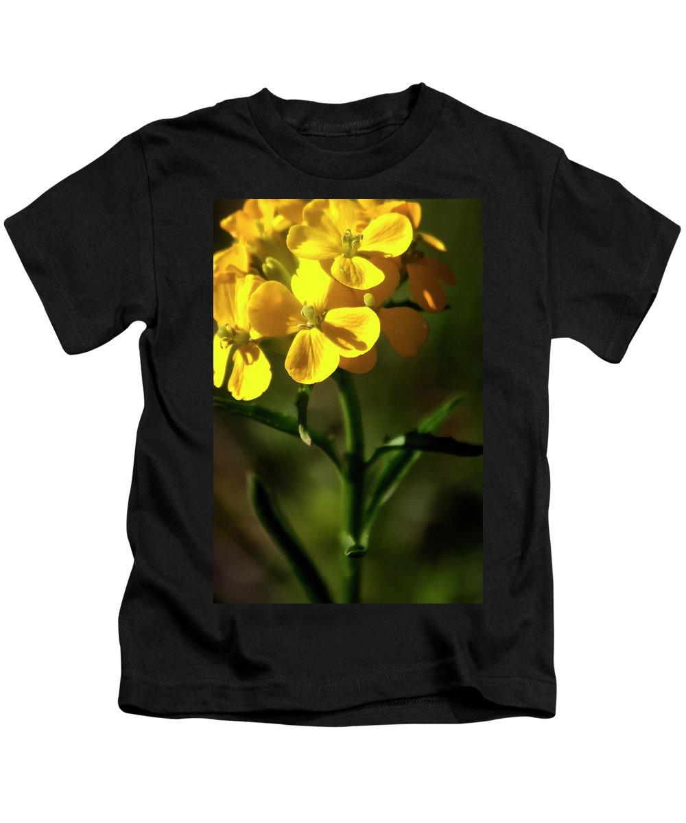 Wildflowers Kids T-Shirt featuring the photograph Rough Wallflower - 60618-122 by Albert Seger