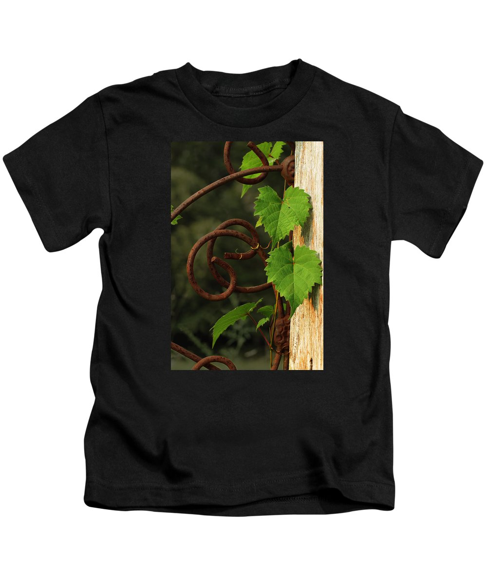 Grape Vine Kids T-Shirt featuring the photograph Rust Vine by Grant Groberg