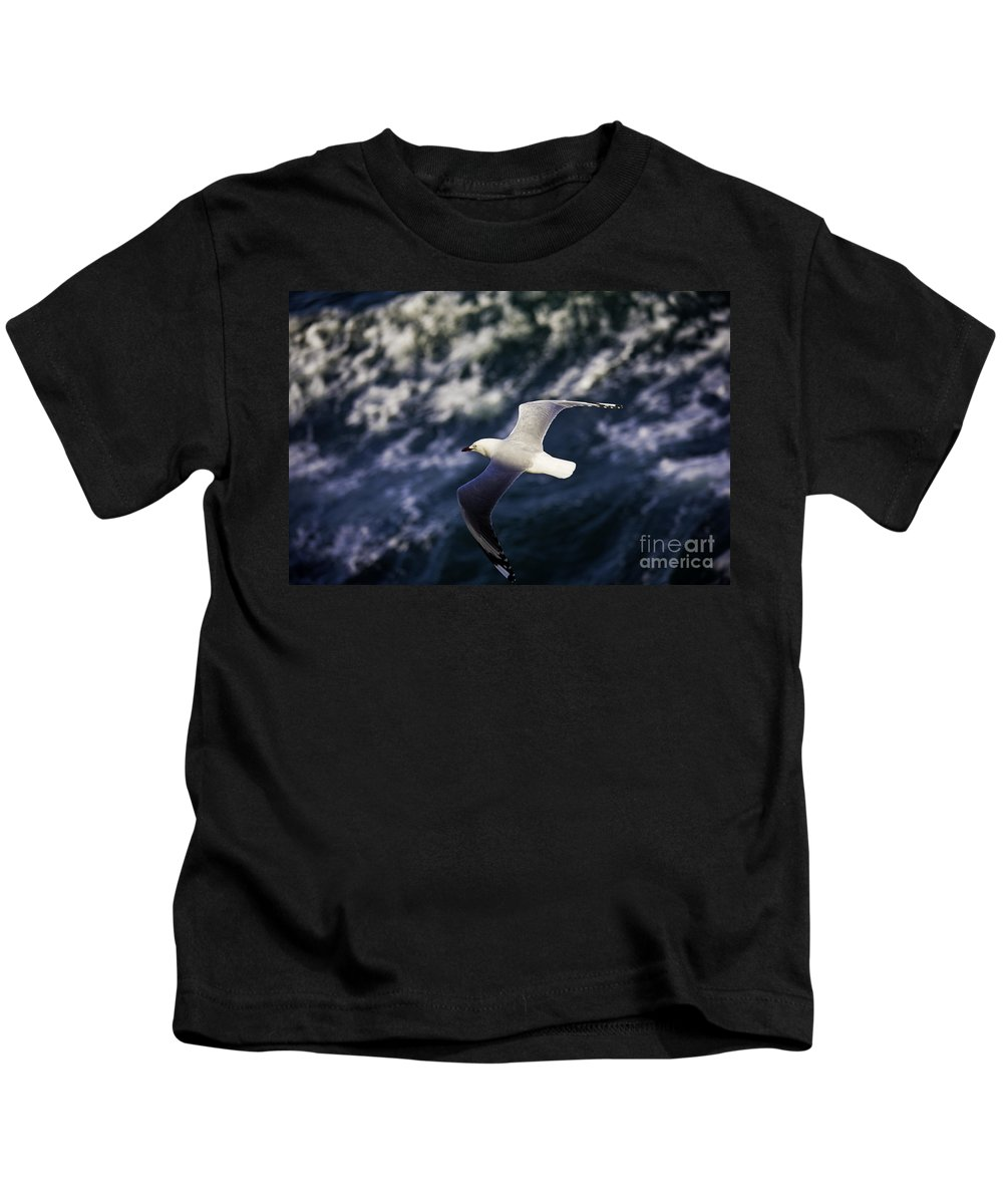 Seagull Kids T-Shirt featuring the photograph Seagull In Wake by Sheila Smart Fine Art Photography