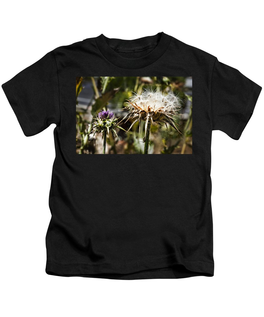 Artichoke Thistle Kids T-Shirt featuring the photograph Seedy Neighborhood by Kelley King