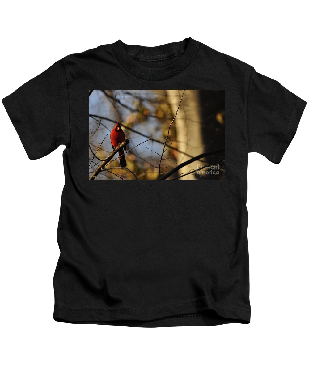 Red Bird Kids T-Shirt featuring the photograph Shadowy Figure by Vicky Tubb