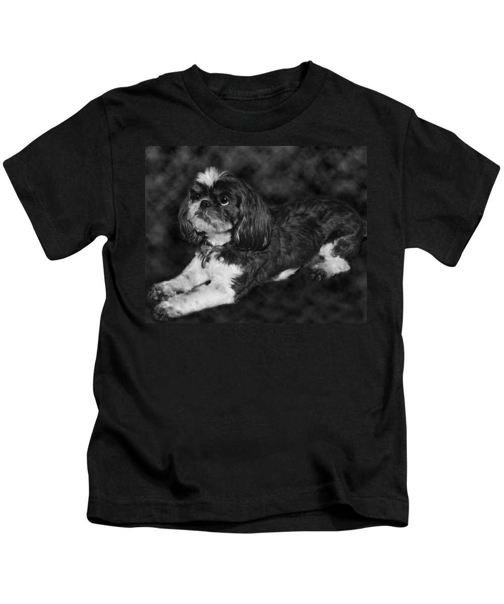 3scape Kids T-Shirt featuring the painting Shih Tzu by Adam Romanowicz