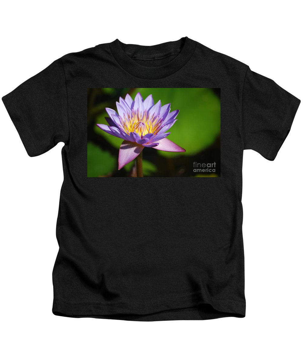 Nymphaea Kids T-Shirt featuring the photograph Single Purple Water Lily Number One by Heather Kirk
