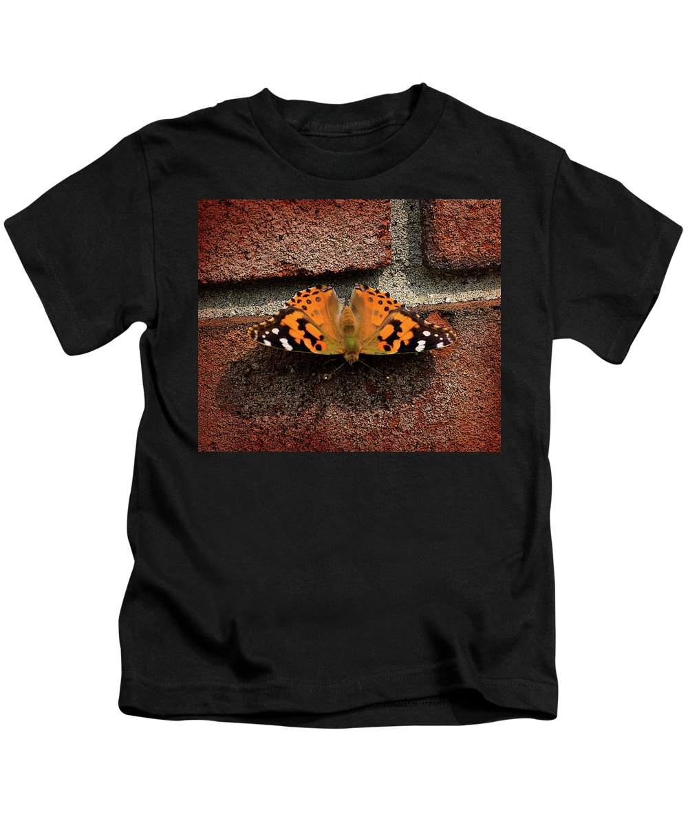 Butterfly Kids T-Shirt featuring the photograph Skipper Warming In The Morning Sun by Bob Belz