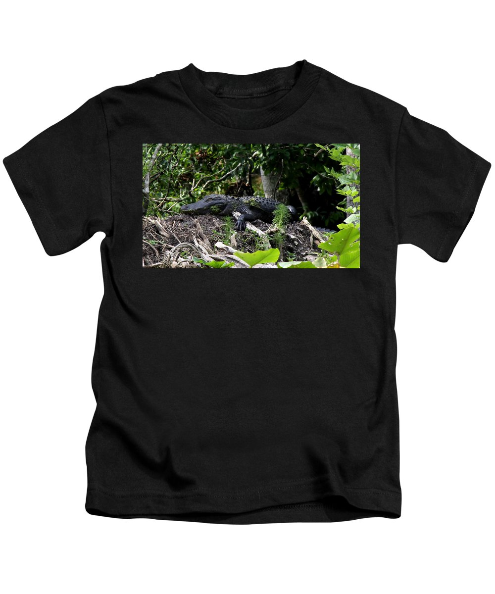 American Alligator Kids T-Shirt featuring the photograph Sleeping Alligator by Barbara Bowen