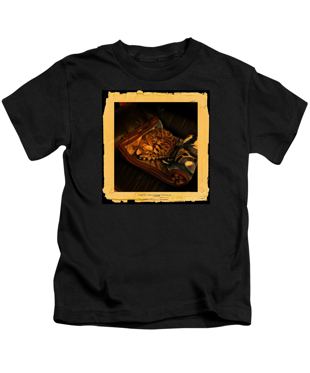 Barbara Griffin Kids T-Shirt featuring the photograph Sleeping Cat Digital Painting by Barbara Griffin