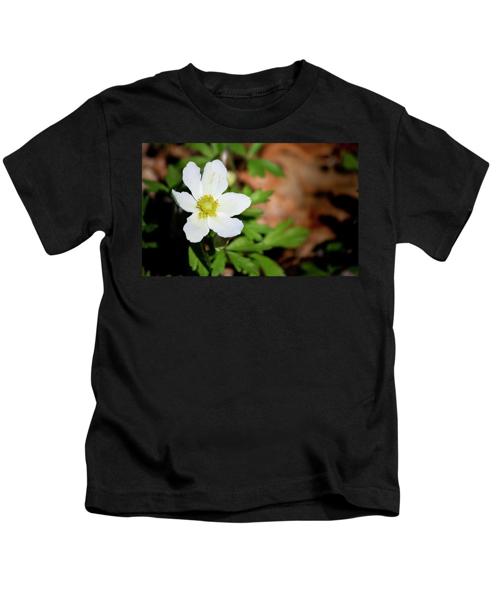 Snowdrop Kids T-Shirt featuring the photograph Snowdrop Anemone by Teresa Mucha