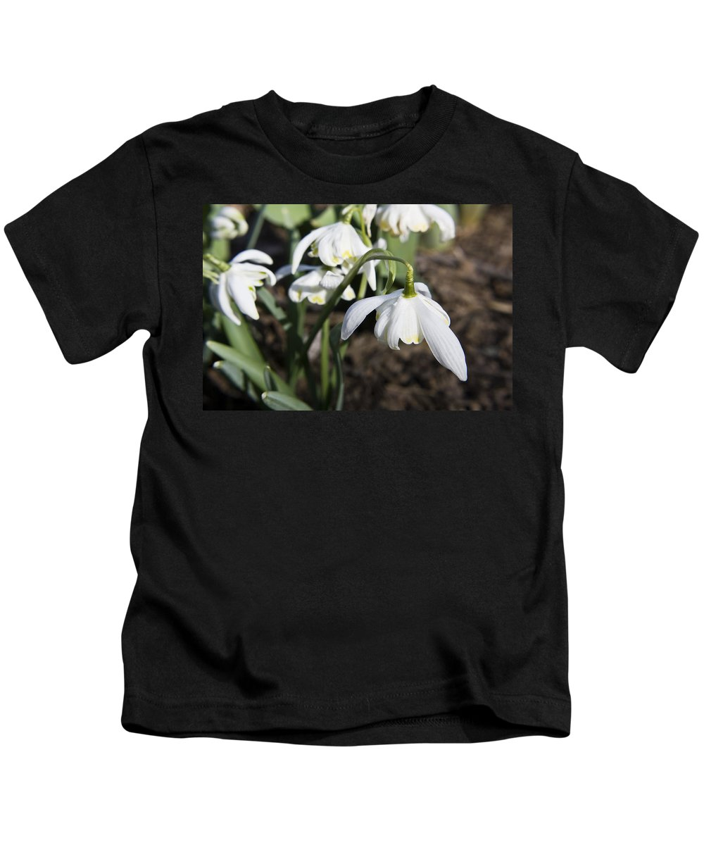 Snowdrops Kids T-Shirt featuring the photograph Snowdrops by Teresa Mucha