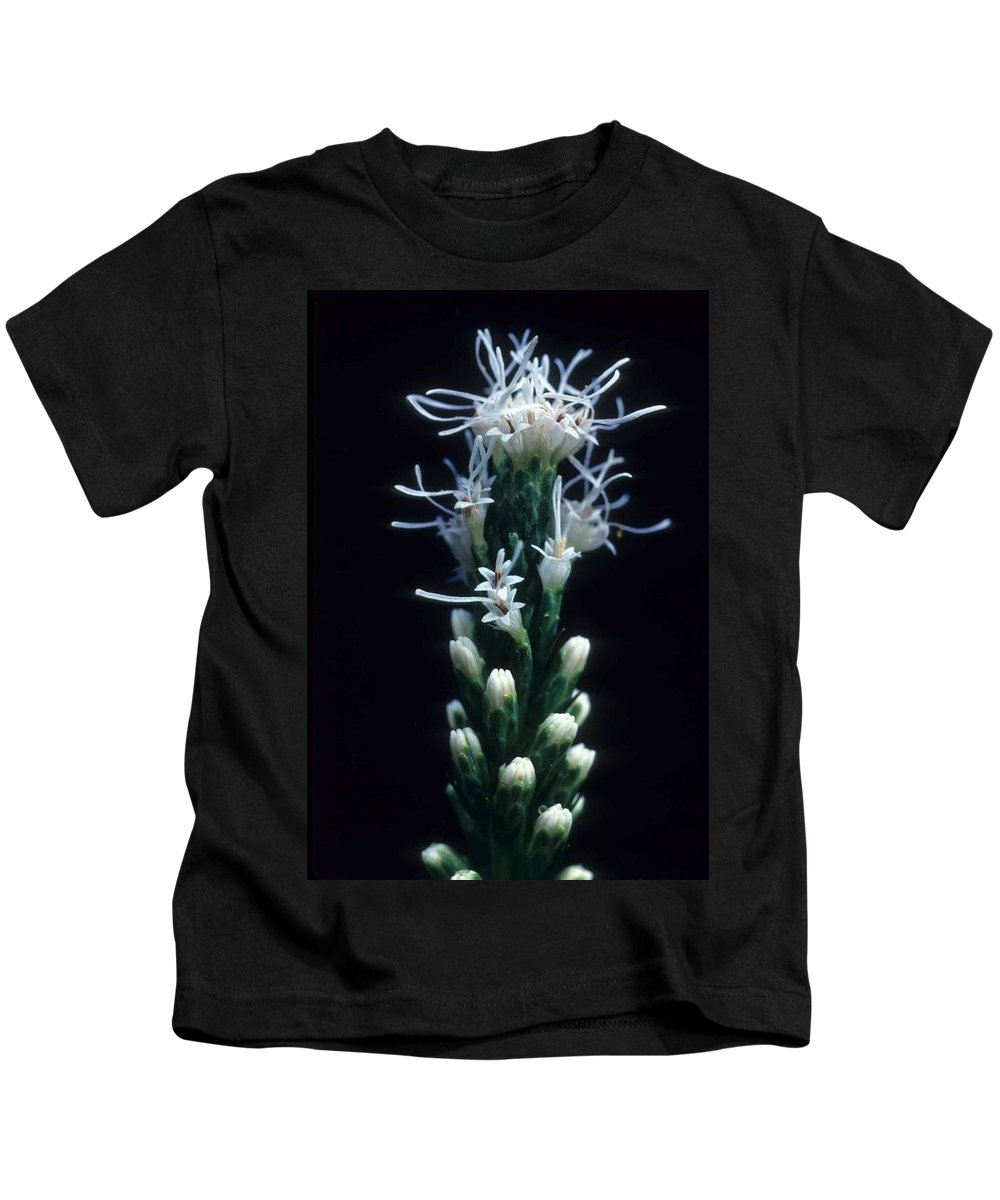 Flower Kids T-Shirt featuring the photograph Snowflake Flower by Laurie Paci