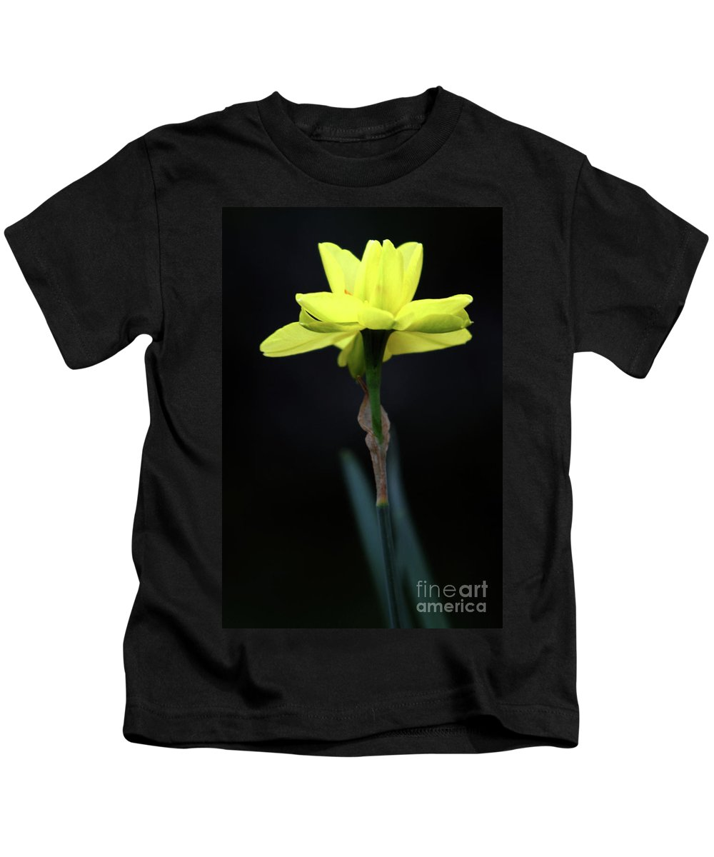 Background Kids T-Shirt featuring the photograph Solitaire Yellow Daffodil by Alan Look
