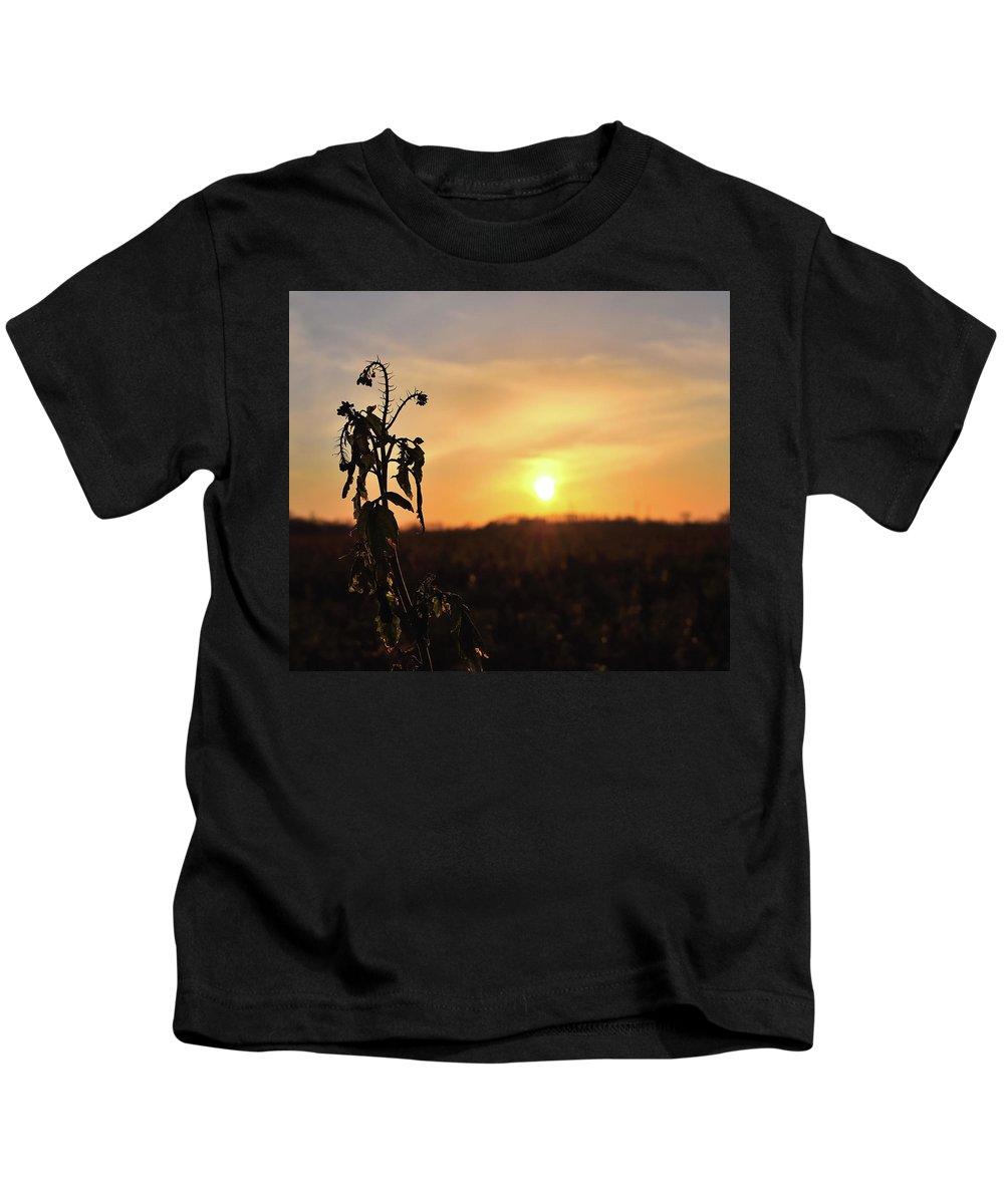Sonnenuntergang Blume Flowwer Sky Himmel Kids T-Shirt featuring the photograph Sonnenuntergang by Scimitarable