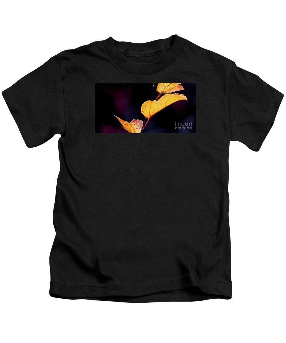 Leaves Kids T-Shirt featuring the photograph Souls Approach by Linda Shafer