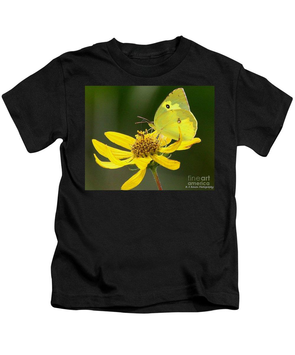 Southern Dogface Butterfly Kids T-Shirt featuring the photograph Southern Dogface Butterfly by Barbara Bowen