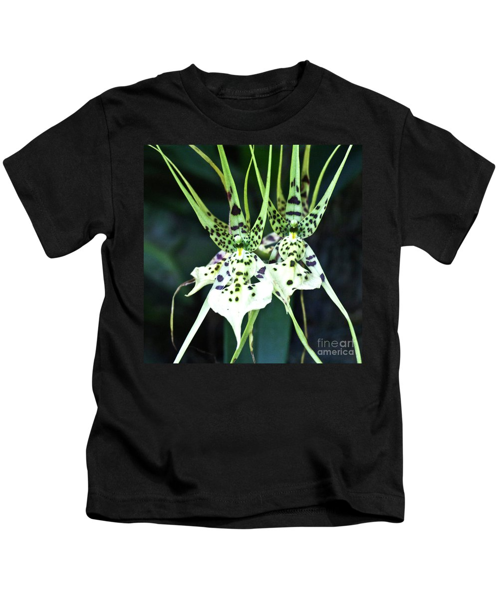 Orchid Kids T-Shirt featuring the photograph Spider Orchid Brassia by Heiko Koehrer-Wagner