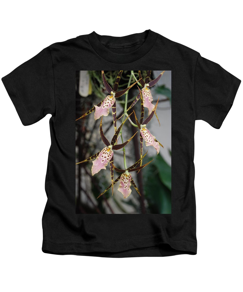 Pink Kids T-Shirt featuring the photograph Spider Orchids by Rob Hans