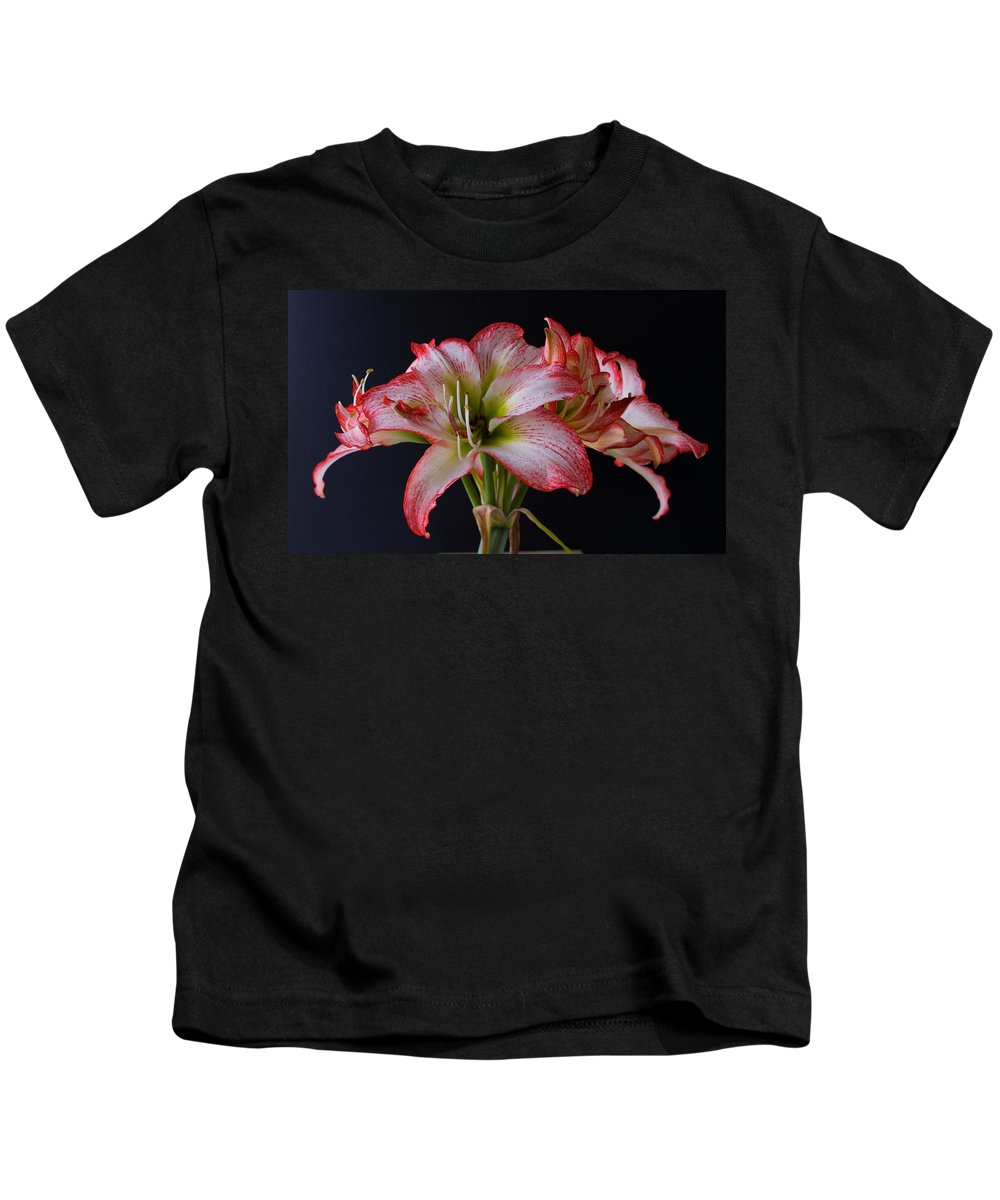 Amaryllis; Flower; Bloom; Blossom; Springtime; Spring; March; Stem. Bulb; Plant; Wildflower; Black; Kids T-Shirt featuring the photograph Spring Amaryllis by Allan Hughes