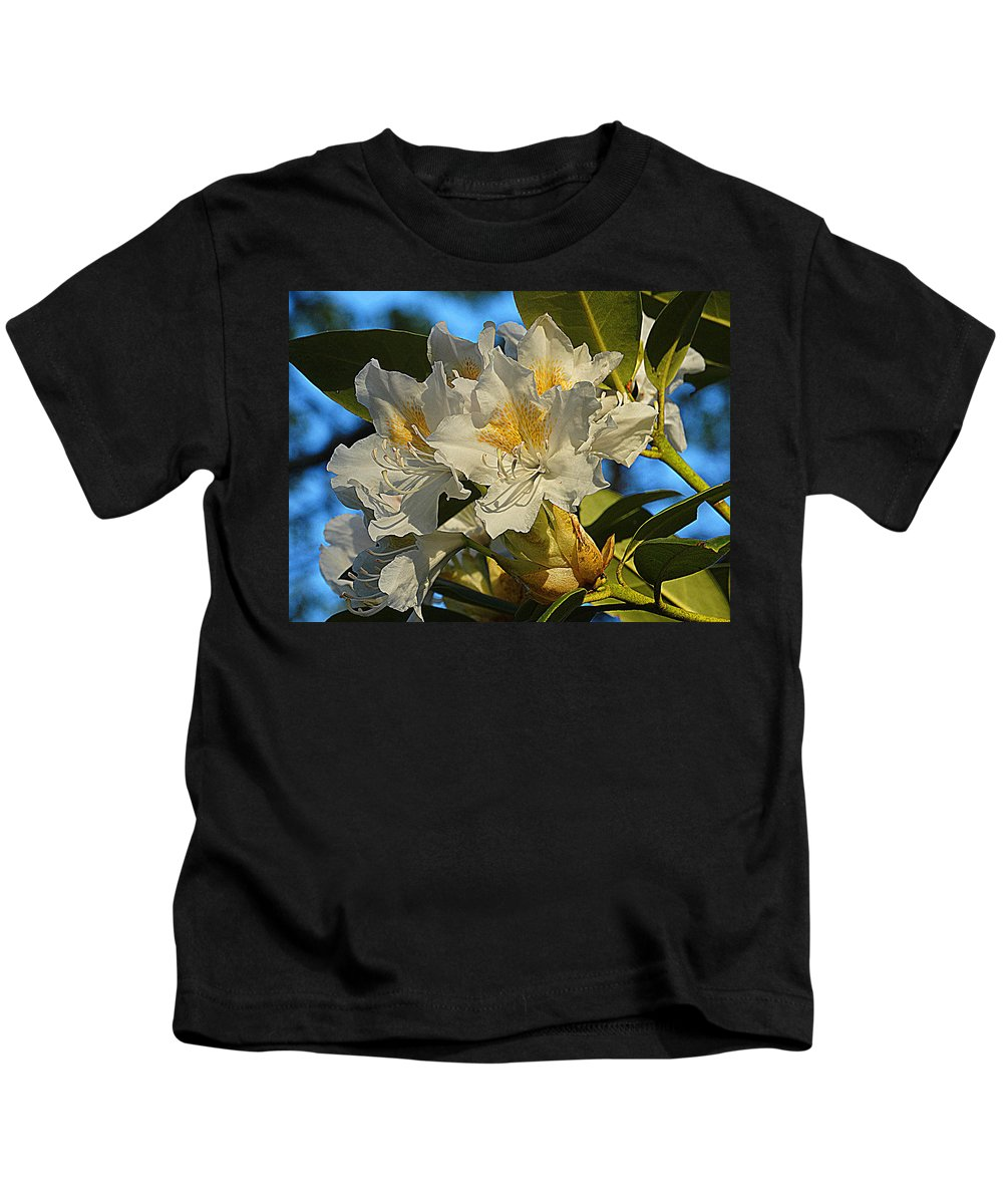 Rhododendron Kids T-Shirt featuring the photograph Spring Exuberance by Dianne Cowen