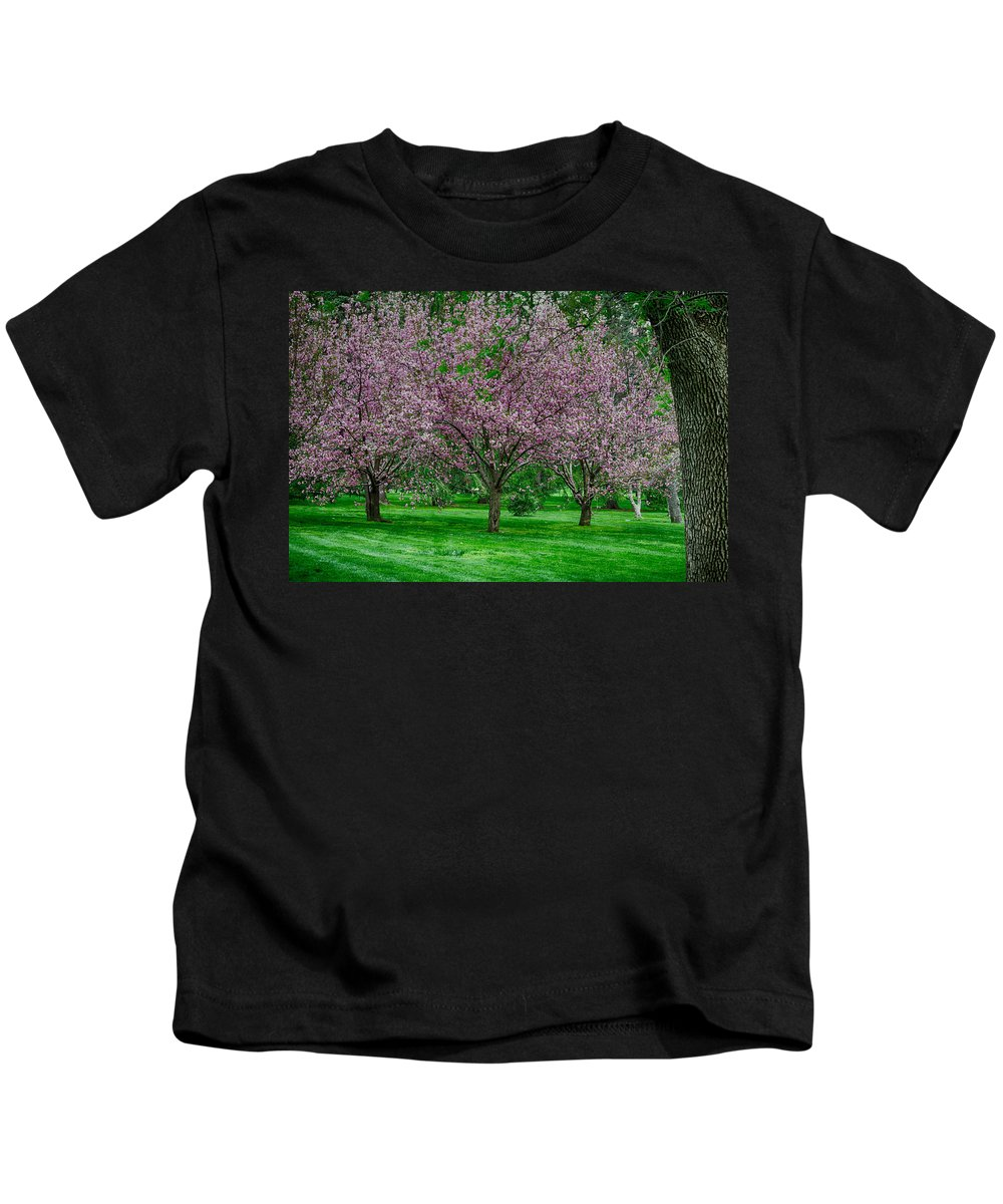 Spring Kids T-Shirt featuring the photograph Spring Series #09 by John Diebolt