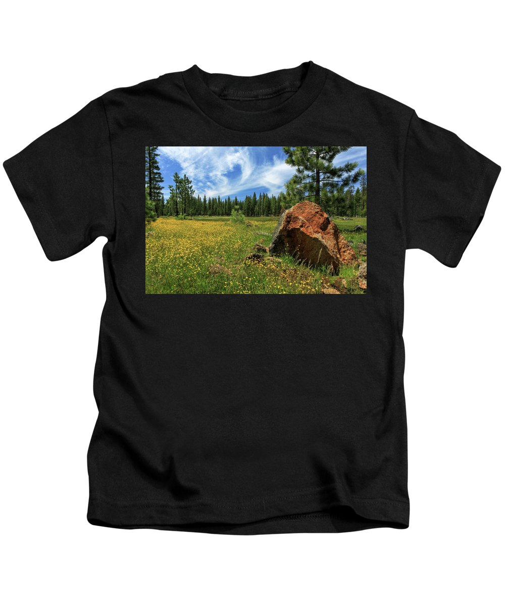 Landscape Kids T-Shirt featuring the photograph Springtime In Lassen County by James Eddy