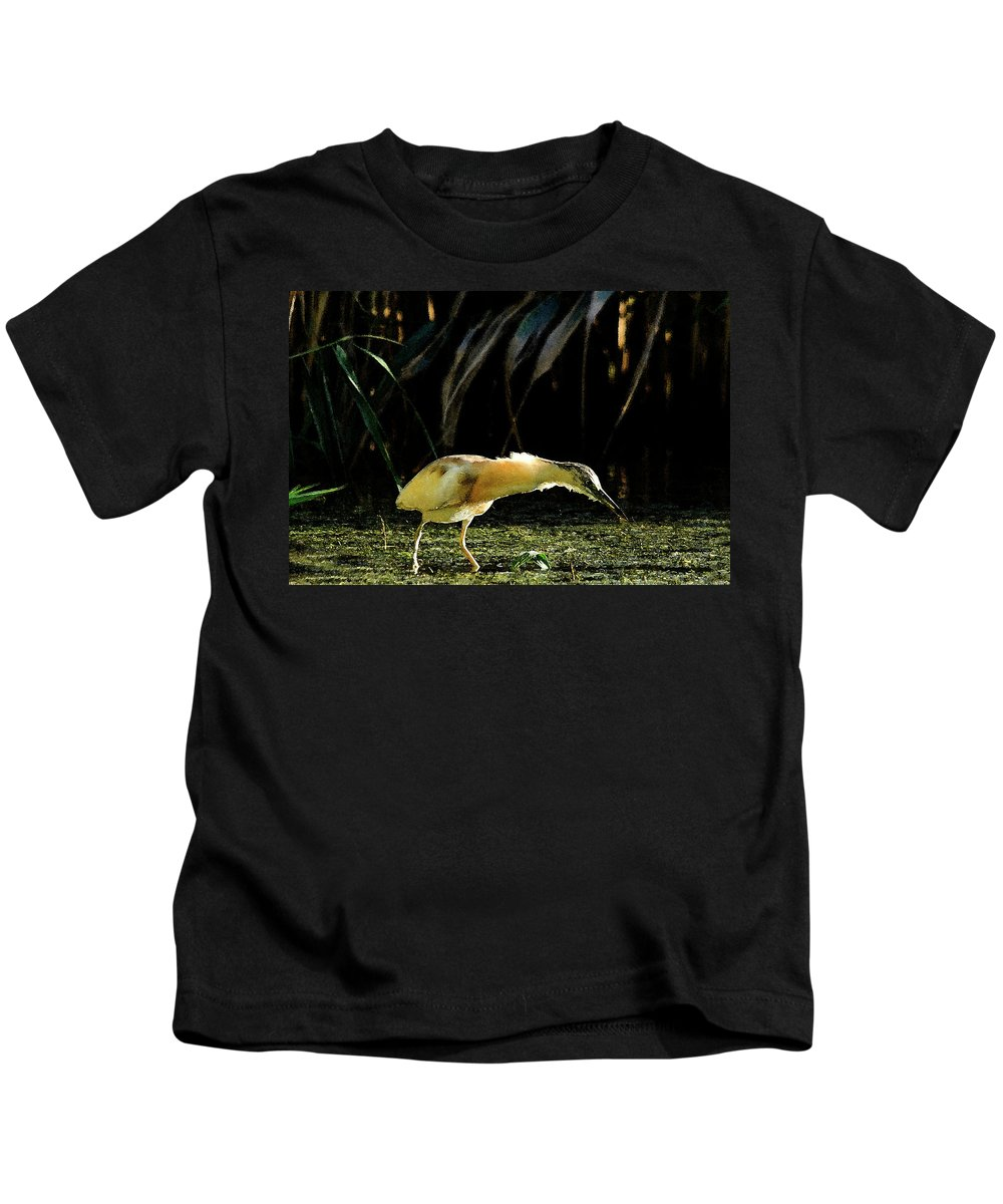Herons Kids T-Shirt featuring the photograph Squacco Heron On The Look Out For Fish by Cliff Norton
