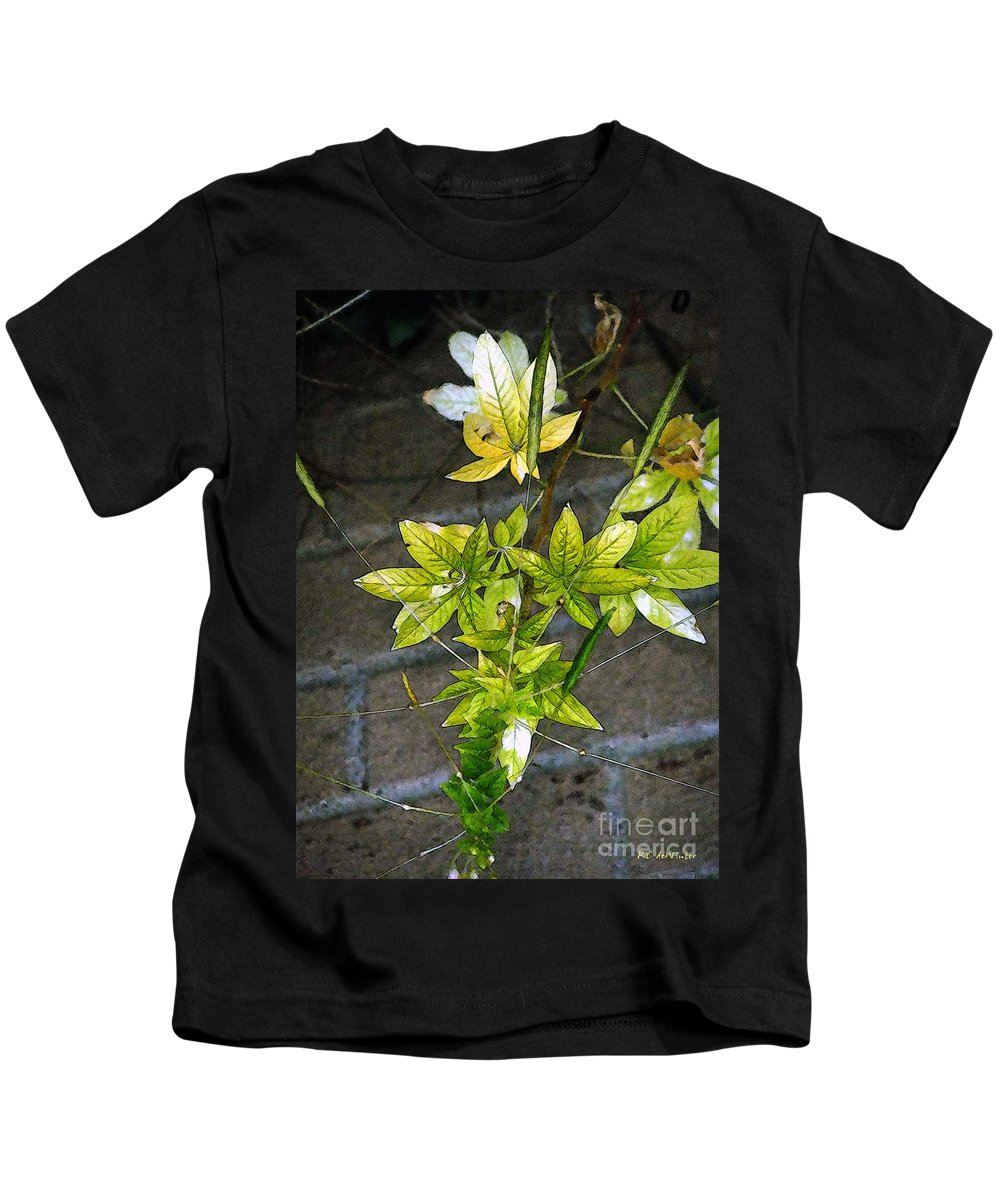 Autumn Kids T-Shirt featuring the painting Stalk With Seed Pods by RC DeWinter
