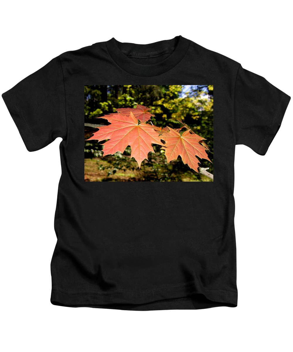 Spring Kids T-Shirt featuring the photograph Strange Phenomenon by Will Borden