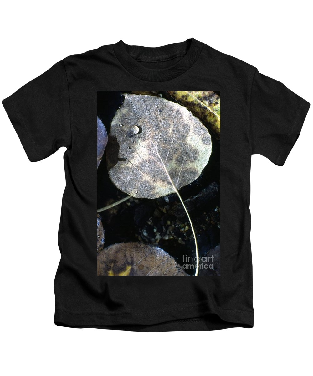 California Kids T-Shirt featuring the photograph Stream Leaf by Norman Andrus
