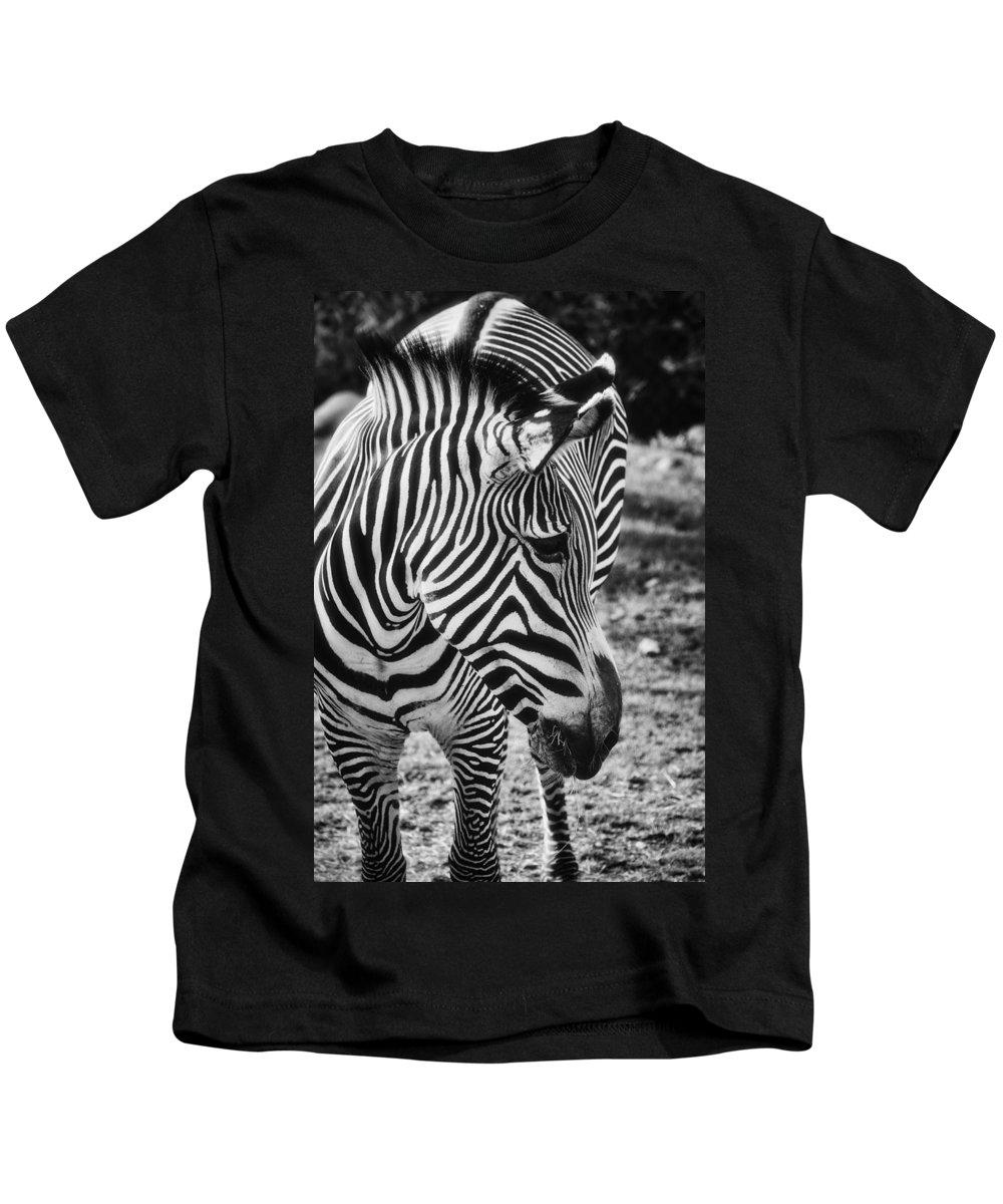Zebra Kids T-Shirt featuring the photograph Stripes by Saija Lehtonen