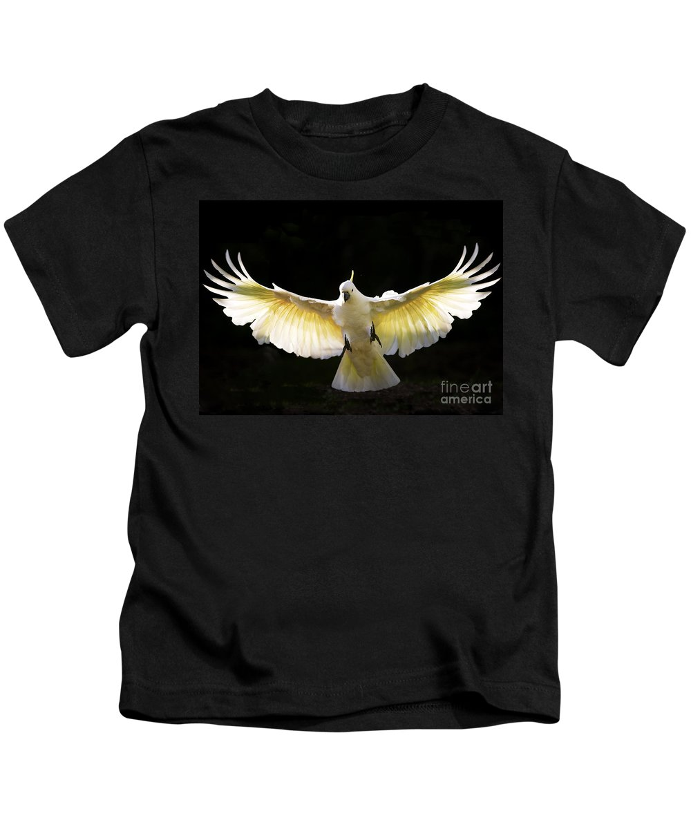 Sulphur Crested Cockatoo Australian Wildlife Kids T-Shirt featuring the photograph Sulphur Crested Cockatoo In Flight by Sheila Smart Fine Art Photography