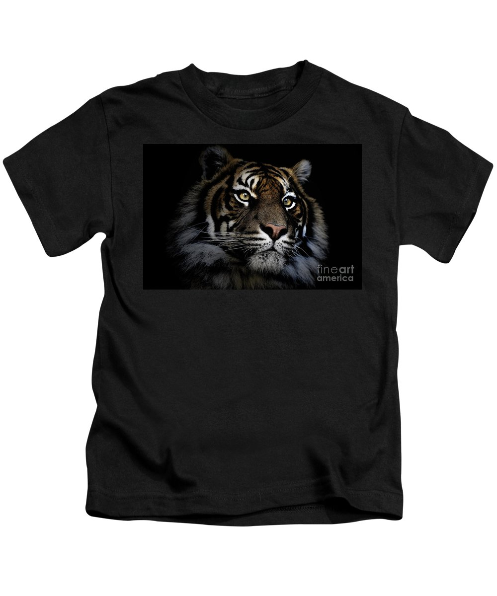 Sumatran Tiger Wildlife Endangered Kids T-Shirt featuring the photograph Sumatran Tiger by Sheila Smart Fine Art Photography