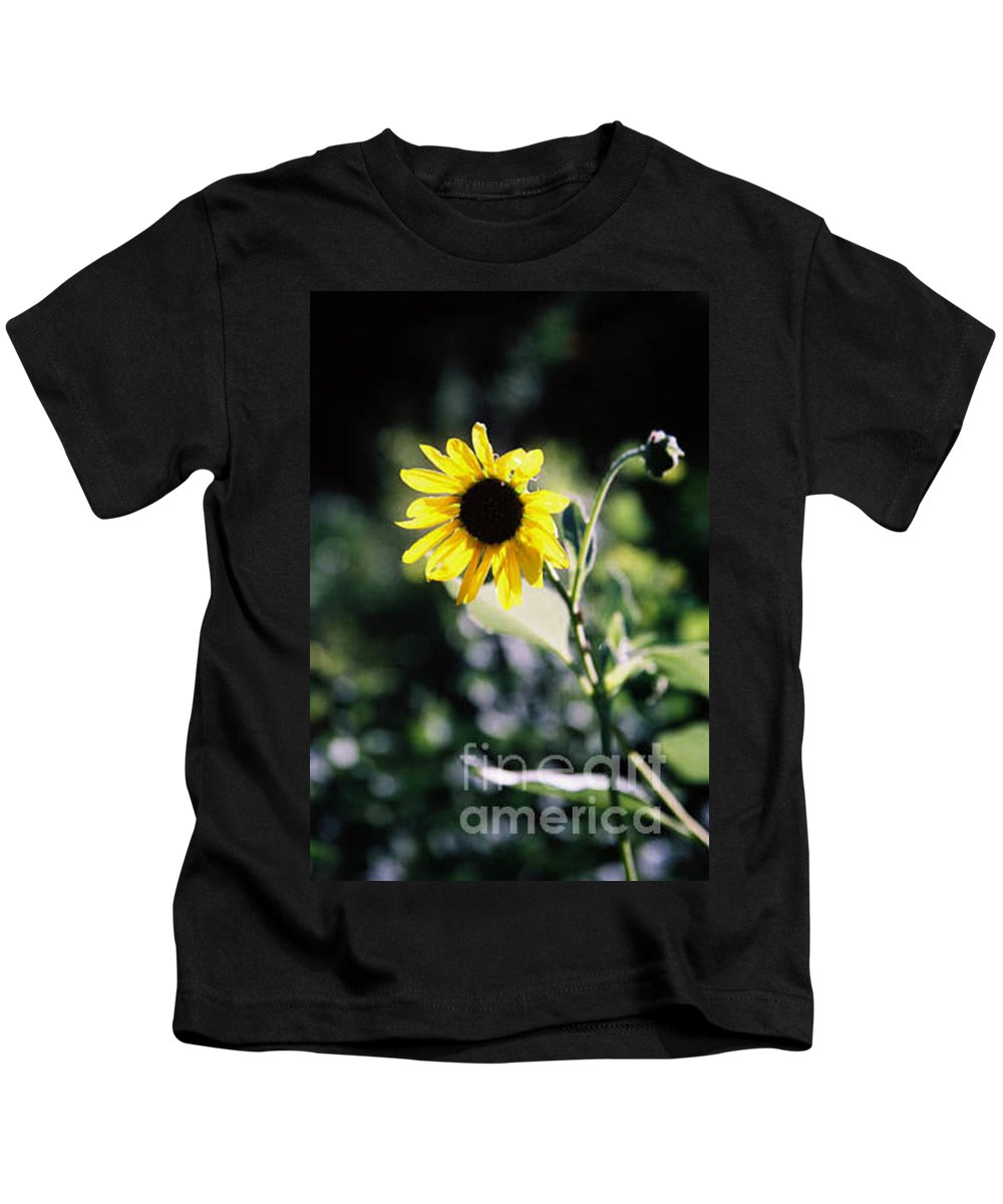 Sunflower Kids T-Shirt featuring the photograph Summer Sunshine by Kathy McClure
