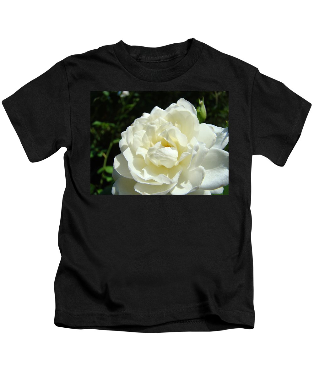 Rose Kids T-Shirt featuring the photograph Sunlit White Rose Art Print Floral Giclle Print Baslee Troutman by Baslee Troutman