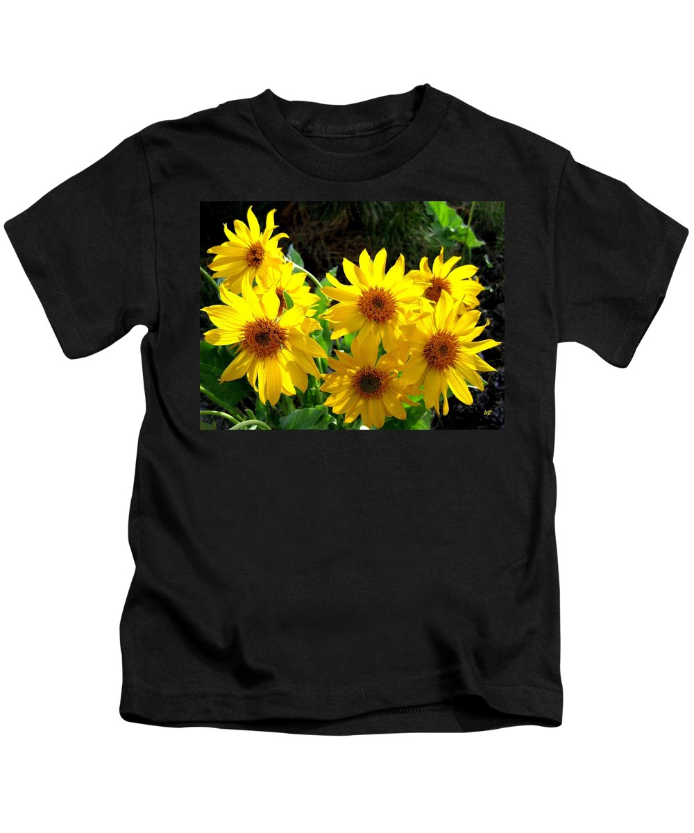 Wildflowers Kids T-Shirt featuring the photograph Sunlit Wild Sunflowers by Will Borden