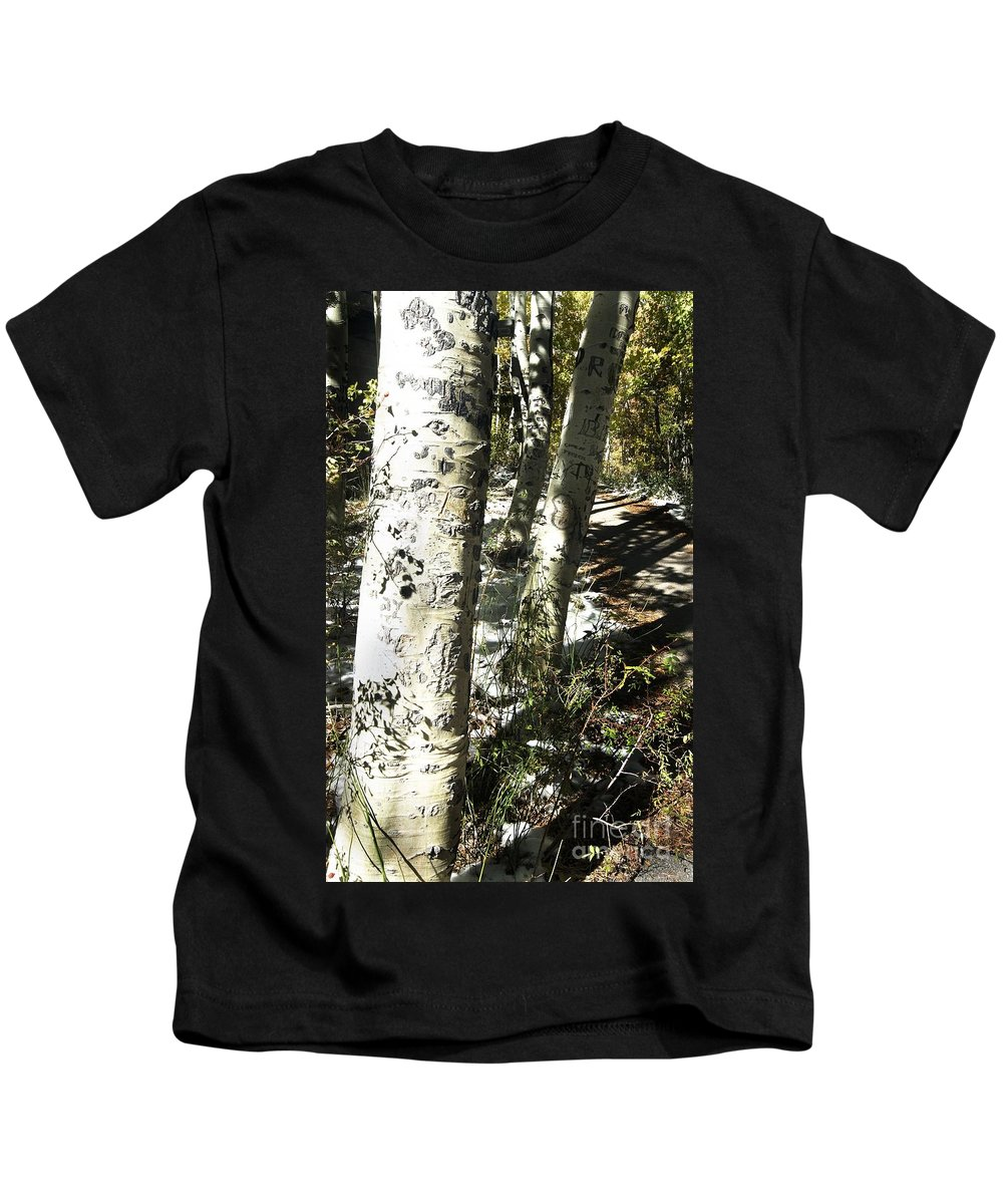 California Kids T-Shirt featuring the photograph Sunny Aspen Shadows by Norman Andrus