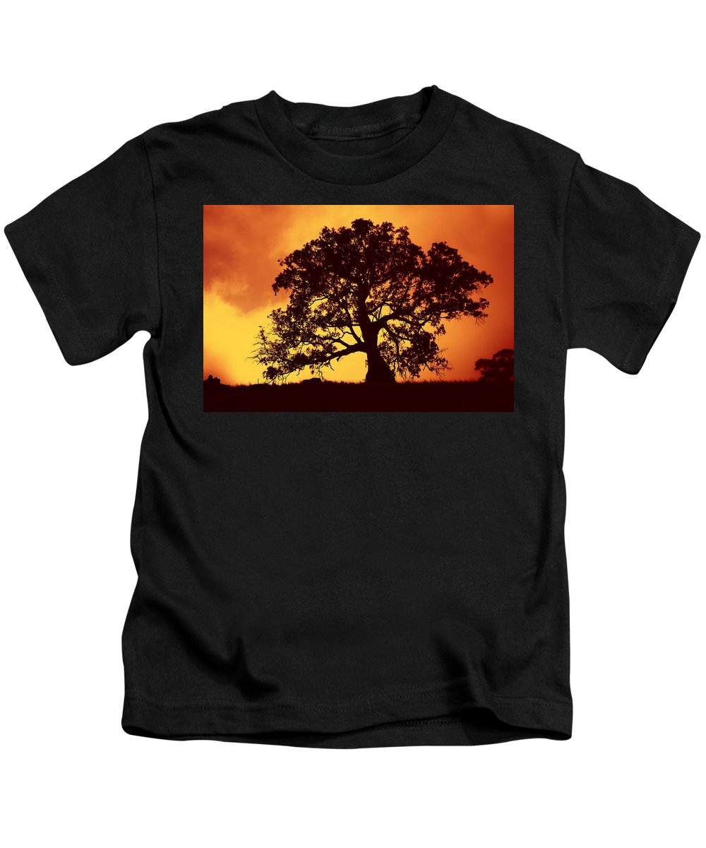 Gum Tree Kids T-Shirt featuring the photograph Sunrise Gum by Mike Dawson