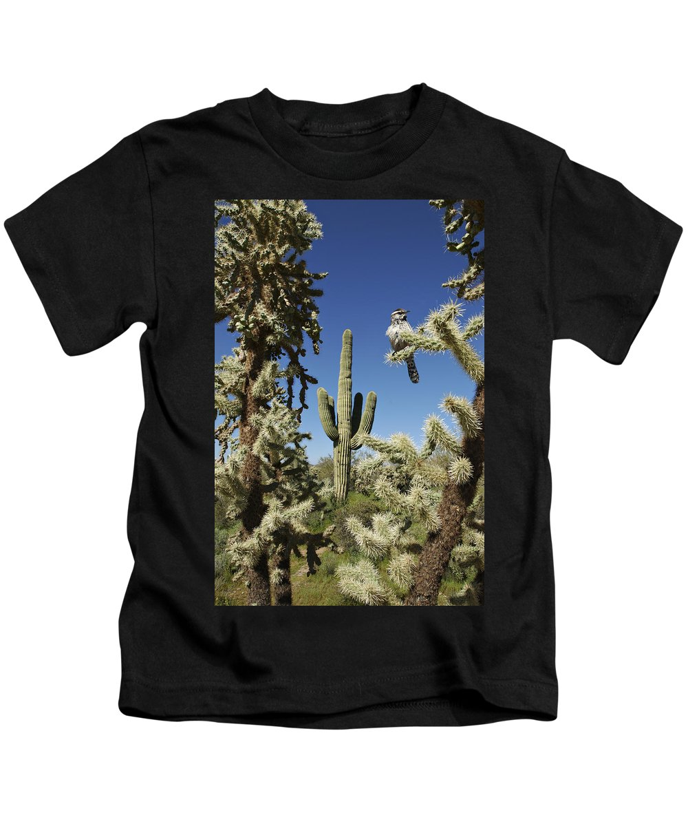 Saguaro Kids T-Shirt featuring the photograph Surrounded Saguaro Cactus Wren by Jill Reger