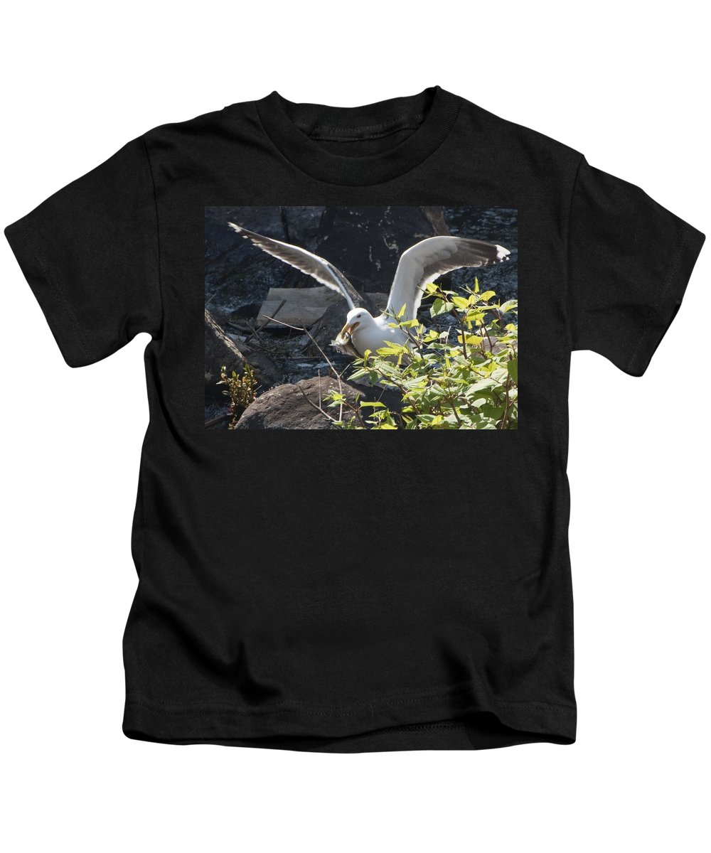 Seagull Kids T-Shirt featuring the photograph Sushi by Steven Natanson