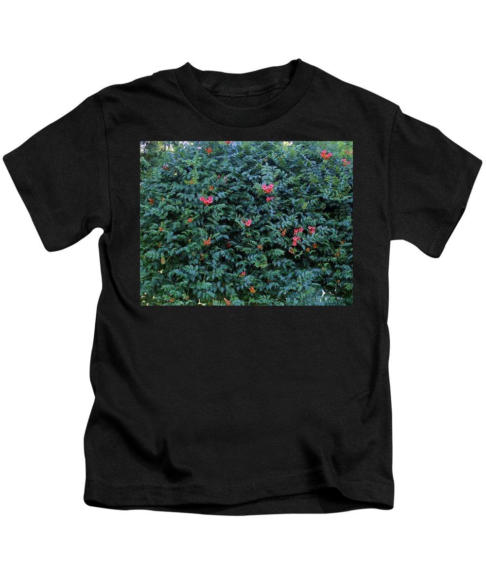 Trumpet Vine Kids T-Shirt featuring the photograph Sweet Trumpet Vine. by James Lafnear