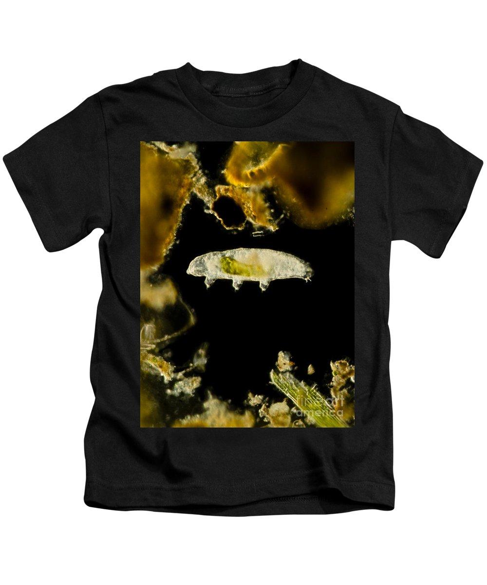 Science Kids T-Shirt featuring the photograph Tardigrade, Or Water Bear, Lm by Rub�n Duro/BioMEDIA ASSOCIATES LLC
