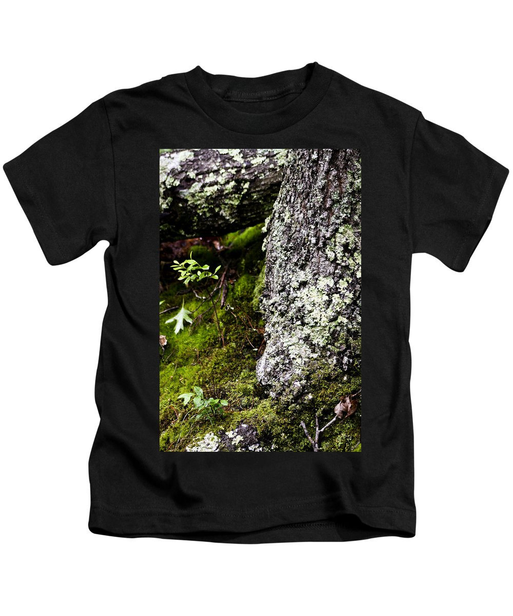 Moss Kids T-Shirt featuring the photograph The Forest Floor Bluestone State Park West Virginia by Teresa Mucha