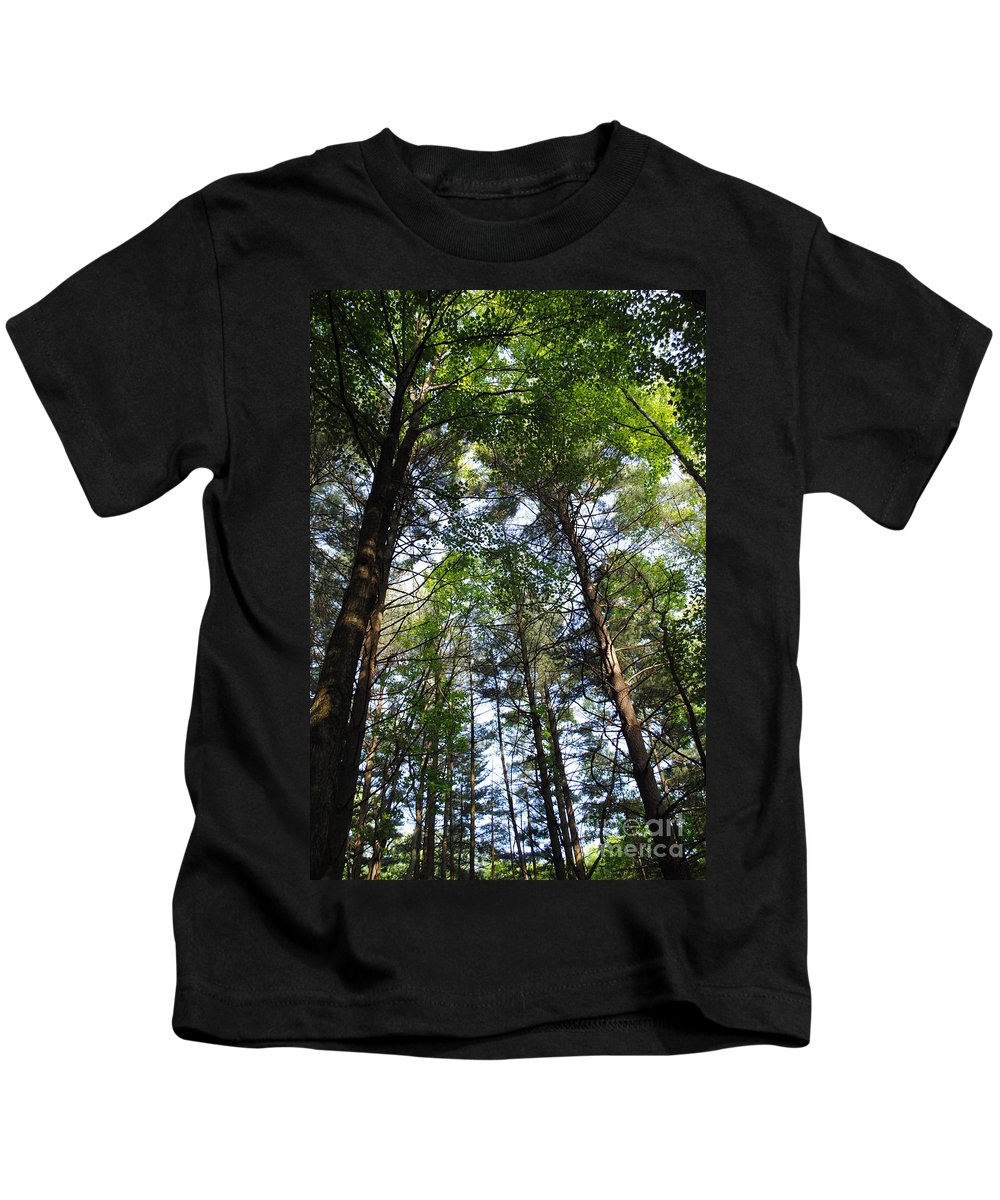 Trees Kids T-Shirt featuring the photograph The Forest by Jost Houk