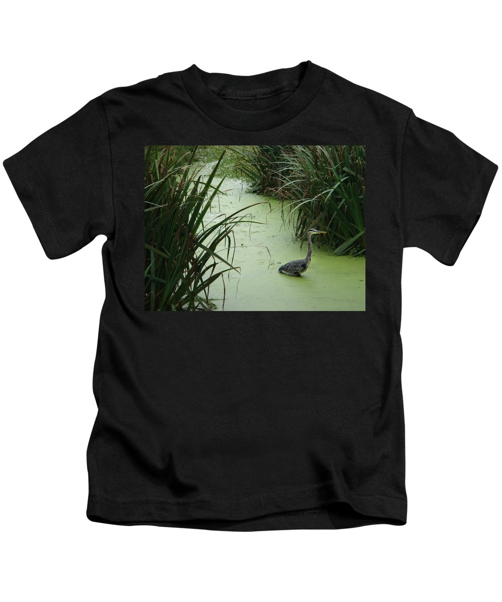 Blue Heron Kids T-Shirt featuring the photograph The Hunter by Donna Blackhall