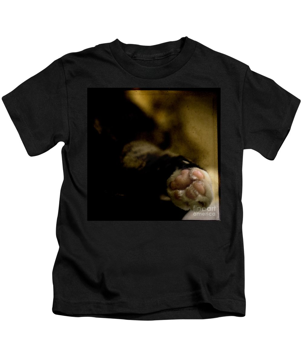 Cat Kids T-Shirt featuring the photograph The Paw by Angel Ciesniarska