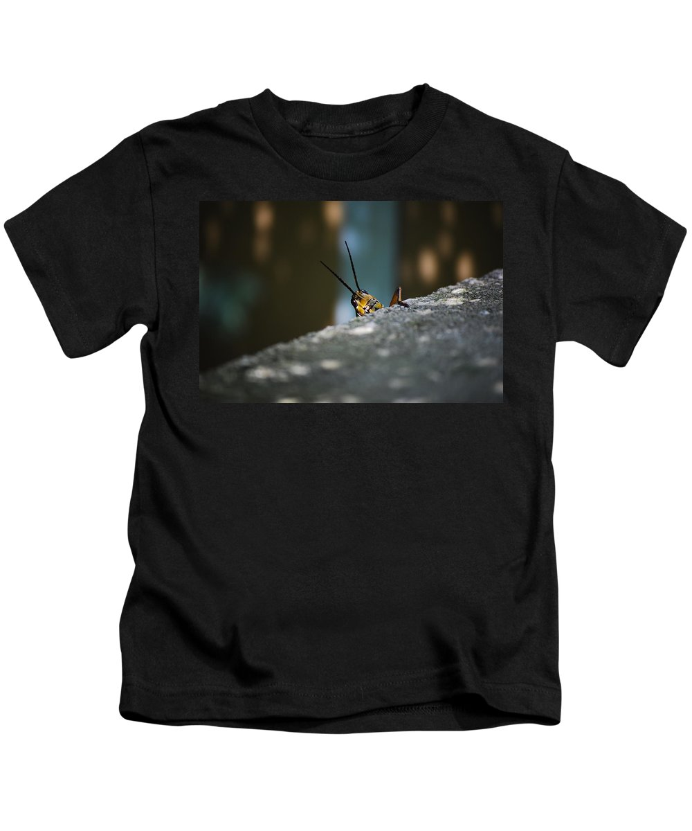 Bugs Kids T-Shirt featuring the photograph The Real Hopper by Robert Meanor