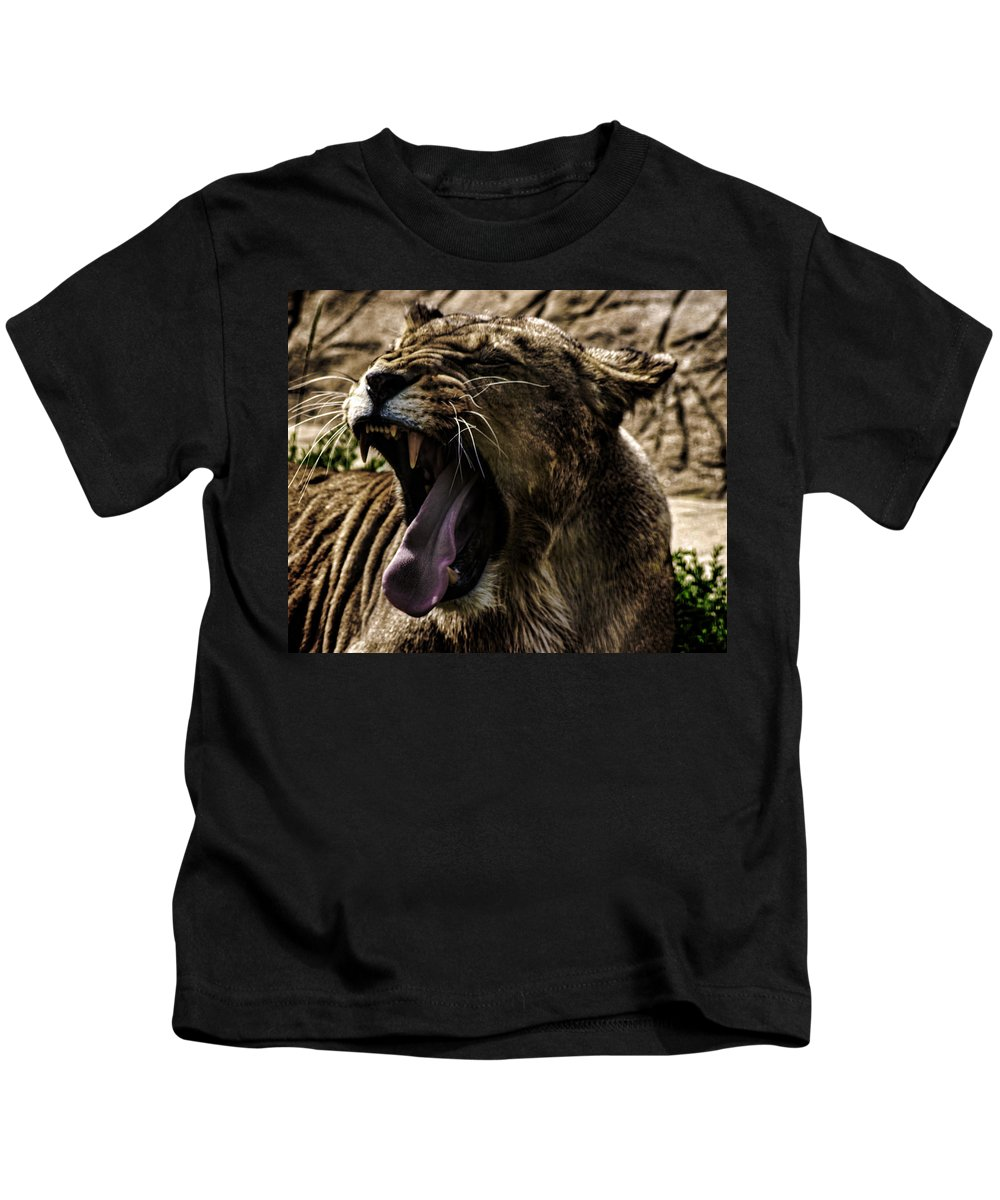Lion Kids T-Shirt featuring the photograph The Roaring Lion by Martin Newman
