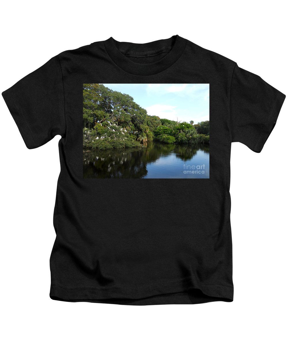 Names Of Birds Kids T-Shirt featuring the photograph The Rookery by Skip Willits