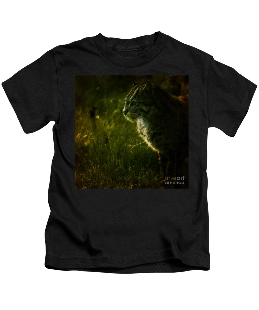 Zoo Kids T-Shirt featuring the photograph The Wild Cat by Angel Ciesniarska